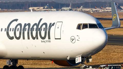 Ferienflieger in Turbulenzen: Nach der Thomas-Cook-Pleite: Was wird aus Condor?