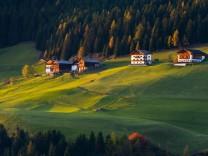 Italien: Die Farbe der Kühe