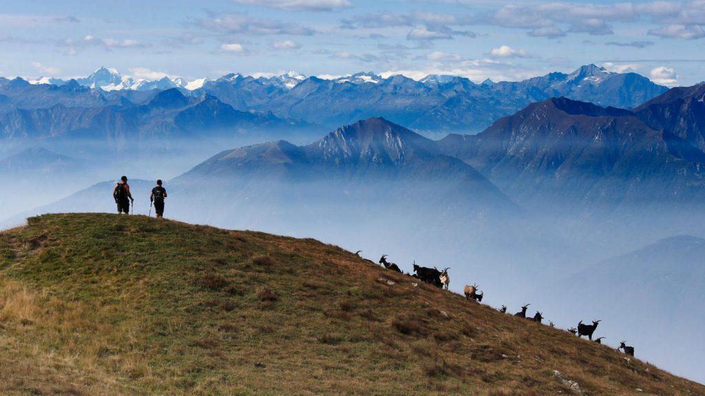 Trekking im Tessin, Teil 1: Über dem Hausberg von Lugano: So wandert es sich auf dem Scenic Trail